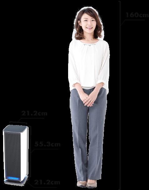高さ55.3cm、幅21.2cmのスリムな設計